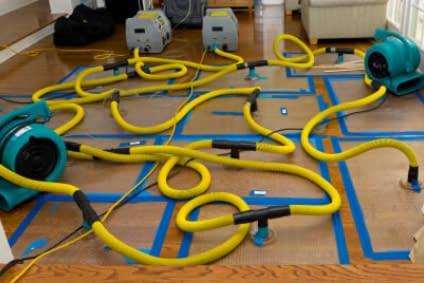 Drying Hardwood Floor in Edmonton